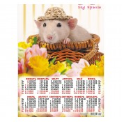 Calendars New Year