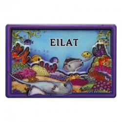 Magnet - Eilat (Eilat) a unique souvenir with a bright design.