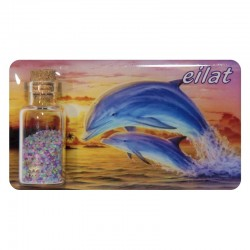 Color magnet with dolphin-Eilat
